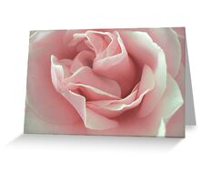 Pink Beauty. Greeting Card