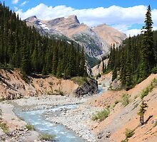 Bow canyon and creek by zumi