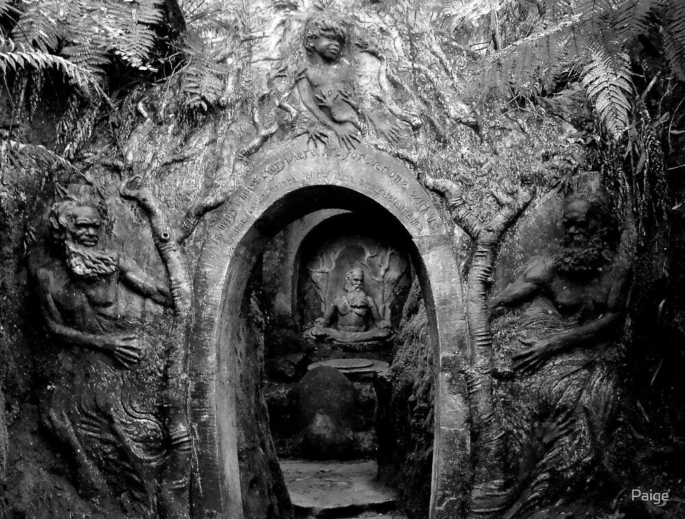 Hidden Vault by Paige