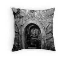 Hidden Vault Throw Pillow