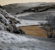 Holyrood Park in the near infrared by onlyalice