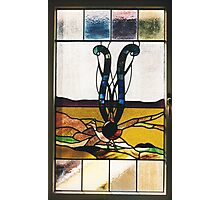 Lyrebird Stained Glass Photographic Print