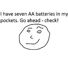 7 AA Batteries Photographic Print