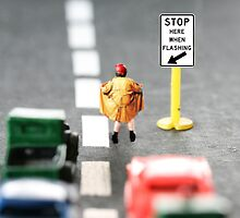 Although Stubby had completed the requisite traffic control training, his career was short-lived by Susan Littlefield