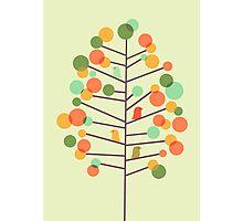 Happy Tree - tweet tweet Photographic Print
