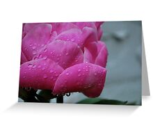 Pink peony tears!  Greeting Card