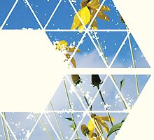 Nature and Geometry - Yellow Flowers by Denis Marsili - DDTK