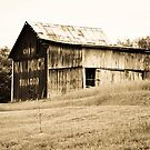 An old barn near Lynn, Indiana by mltrue