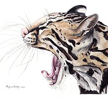 Ocelot by Meaghan Roberts