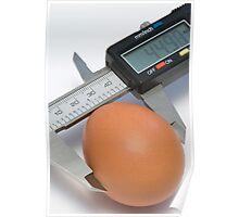 Egg under calibration Poster