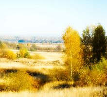 Autumn landscape by igorsin