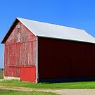 Road to the Red Barn by Brian Gaynor