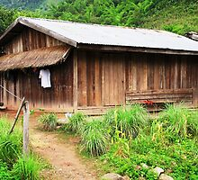 Traditional Windowless Hmong House  by Ethna Gillespie