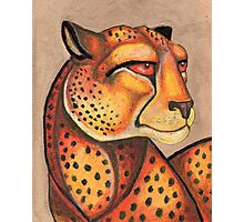 Cheetah Gaze Photographic Print