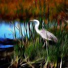 fractalius marsh-Lake Woodruff NWR by Ted Petrovits