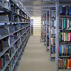 Riyad Nassar Library by Havoc