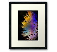 psychedelic whisper Framed Print