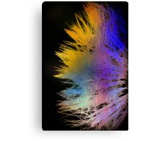 psychedelic whisper Canvas Print