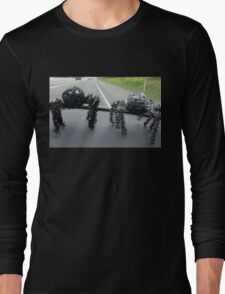 Two hitchhiking spiders Long Sleeve T-Shirt