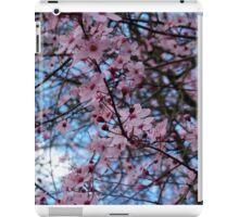 Sakura Blossoms iPad Case/Skin