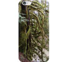 Mossy Cedar, Gifford Pinchot National Forest iPhone Case/Skin