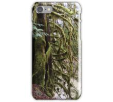 Mossy Cedar, Gifford Pinchot National Forest iPhone Case/Skin