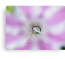Clematis in a drop Canvas Print