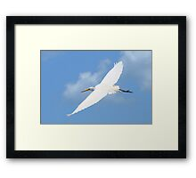 It's a Birding Thing Framed Print