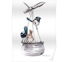 Superb Blue Wrens on Feeder Poster