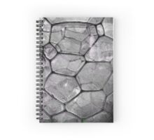 Cellular Voronoi Spiral Notebook