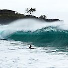 Waimea Shorey by Paul Manning