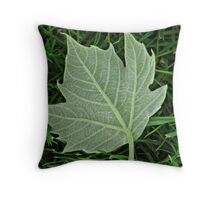 Dropped too soon Throw Pillow
