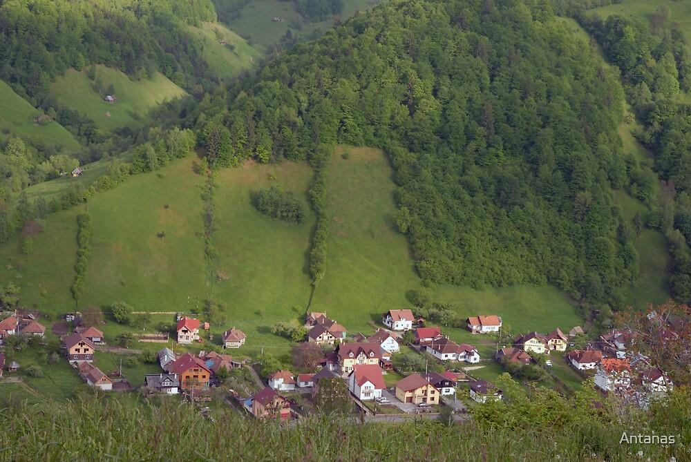 I return from  Romania by Antanas
