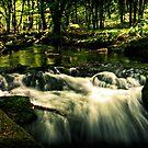 Goliatha Falls by Simon Marsden