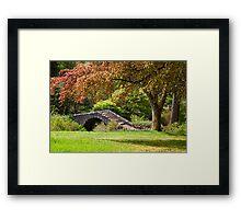A Botanical Walk Framed Print