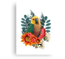 Nature beauty Canvas Print