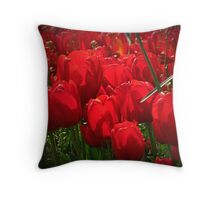 Isn't the Red  Gorgeous on the tulips? Throw Pillow
