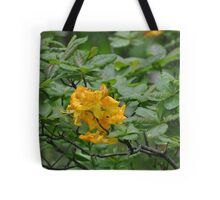 Orange Rhodie Eugene, Oregon Tote Bag