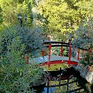 Red Bridge by Stacey Lynn Payne