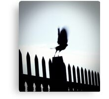 Blurred Bird Canvas Print