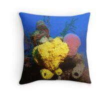 Funky Sponges, Grand Bahama. Throw Pillow