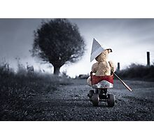 Little Teddy Bear Adventure Trip Photographic Print