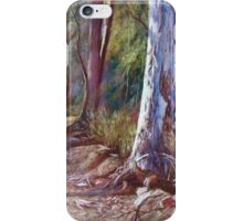 'Winding Back No. 2'  iPhone Case/Skin