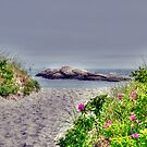 Peace and Serenity by Monica M. Scanlan