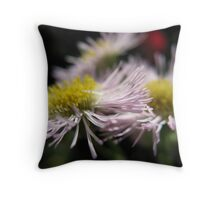Daisy Merry-Go-Round Throw Pillow