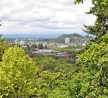 Eugene, Oregon from Hendricks Park by Tamara Lindsey