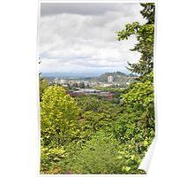 Eugene, Oregon from Hendricks Park Poster