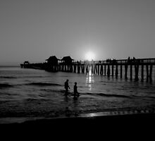 The Naples Florida Pier 2010 by ggpalms