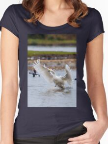 Wild Bewick's swan about to land Women's Fitted Scoop T-Shirt