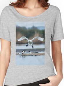 Bewick's swan about to land on water with wings outspread Women's Relaxed Fit T-Shirt